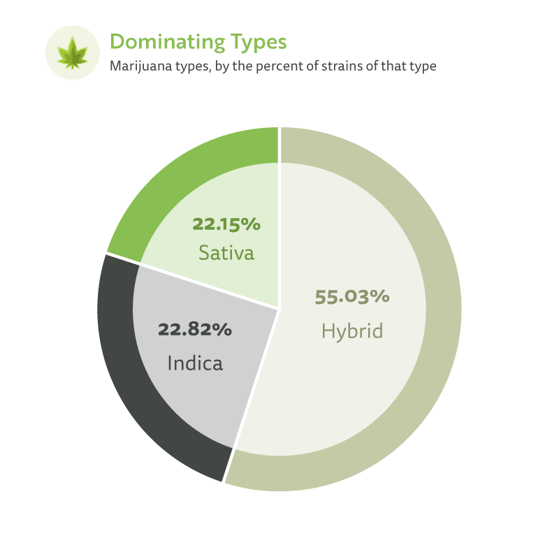 Marijuana types by percent of strains